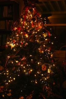 sacred-tree