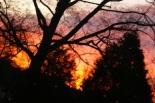 solstice-dawn